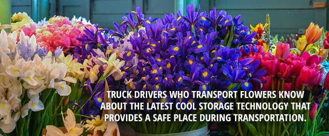 Refrigerated Trucking: It's Not Just for Food, items like flowers and candles are refeer shipped too