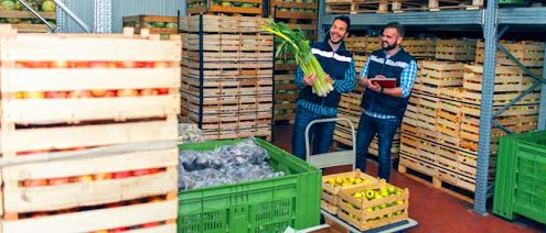 Shipping Fresh Produce: What You Need to Know - ABCO Transportation