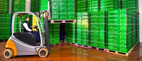 Shipping Fresh Produce: What You Need to Know - ABCO